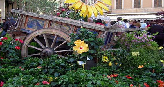 Balconi fioriti - Santarcangelo