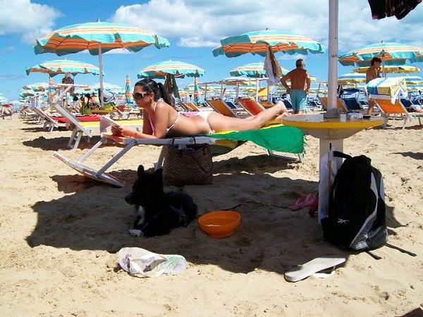 Spiagge per cani e animali in romagna spiagge animarli rimini - Bagno 81 rimini ...
