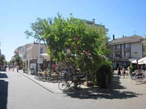 bellaria centro