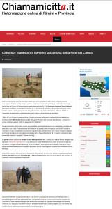 chiamamicitta-it-cattolica-piantate-10-tamerici-sulla-duna-della-foce-del-conca-20-12