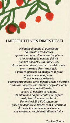 poesia Tonino Guerra frutti dimenticati