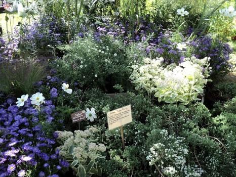 giardini dautore