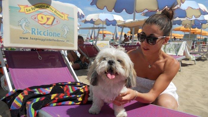 Guida alle spiagge per cani e servizi a 4 zampe: la Romagna è a misura di animali! #caninviaggio 7
