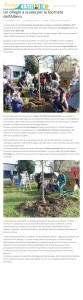 livingcesenatico-it-2017-11-22-un-ciliegio-a-scuola-per-la-giornata-dellalbero