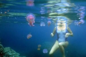 malanni in spiaggia - puntura di medusa