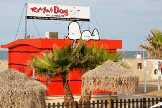 Rimini dog no problem