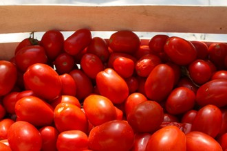 Cassetta di pomodori
