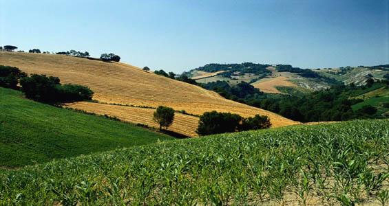 Passeggiate entroterra Romagnolo Valconca